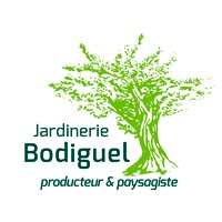 Bodiguel